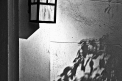 Light on the Wall - 466