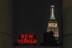 New Yorker - 555