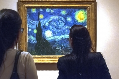 Starry Starry Night - 497