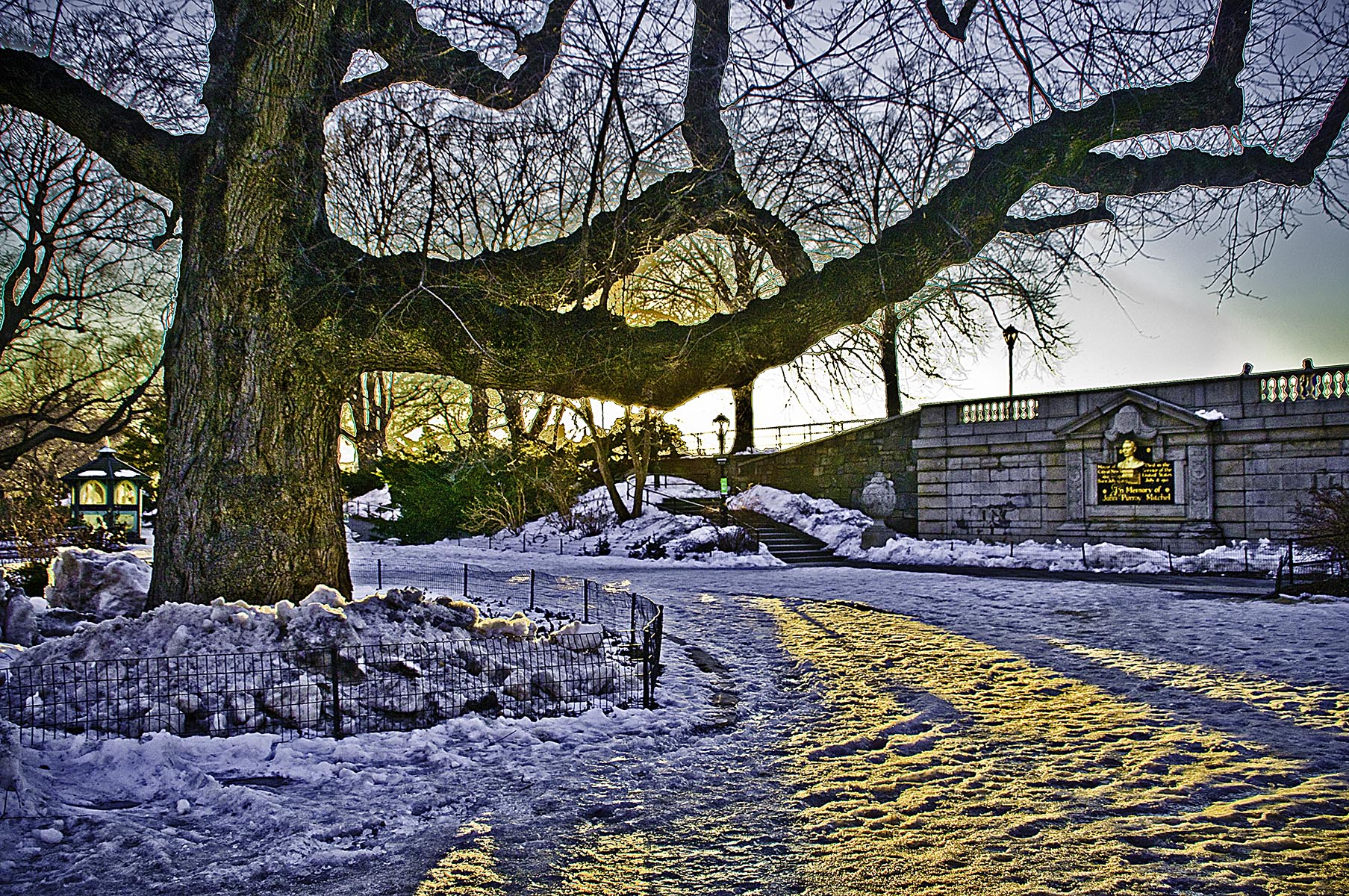 Winter - Central Park NYC - 298