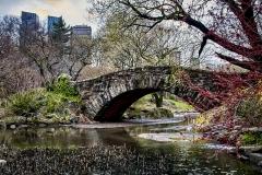 Gapstow Bridge, The Pond - 503