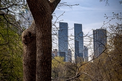 Towers of Central Park - 508