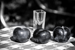 Three Plums - 122