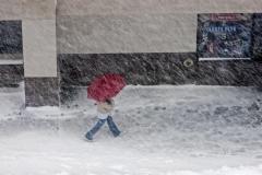 Winter Walk Redux - 343